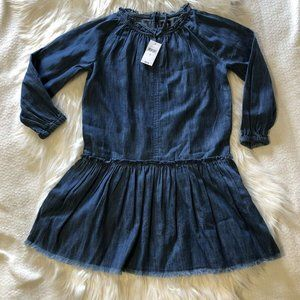 gap chambray dress Childrens Small Long Sleeve Fra
